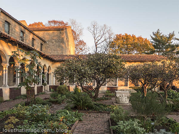 The courtyard medicinal garden at the Cloisters in New York City