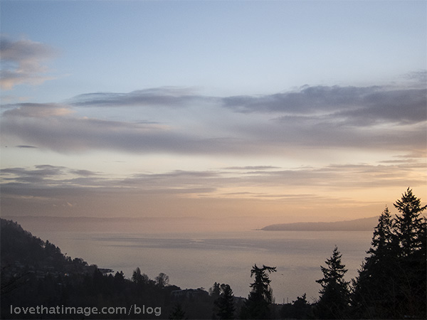 Vista point overlooking Puget Sound on a winter afternoon
