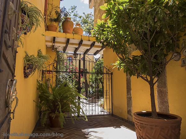 Sunshine in San Miguel courtyard