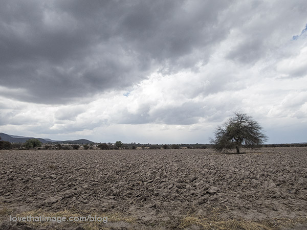 There was unseasonal rain recently fallen, and more coming to this plowed field