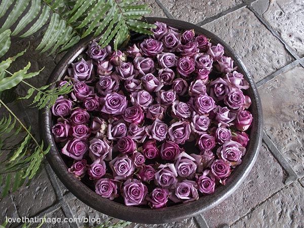 Dozens of lavender roses float in a large bowl on a stone floor