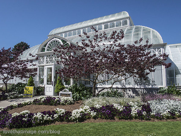 Already with the glass panes whitewashed against the sun, the Conservatory in Volunteer Park is a gem