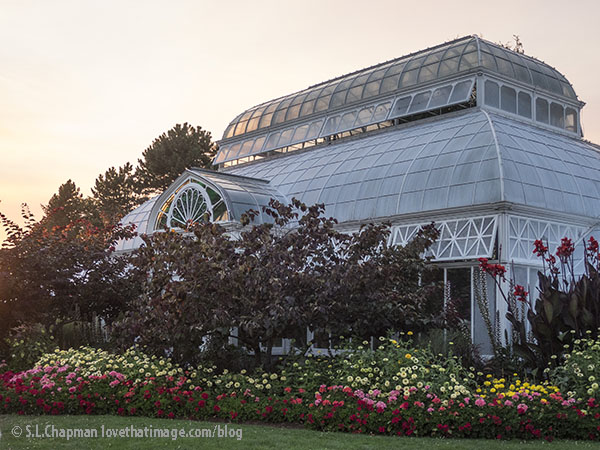 A rainbow of outdoor plantings set off Seattle's hidden gem, the Volunteer Park Conservatory