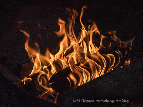 Tongues of orange and yellow flames leap from campfire logs