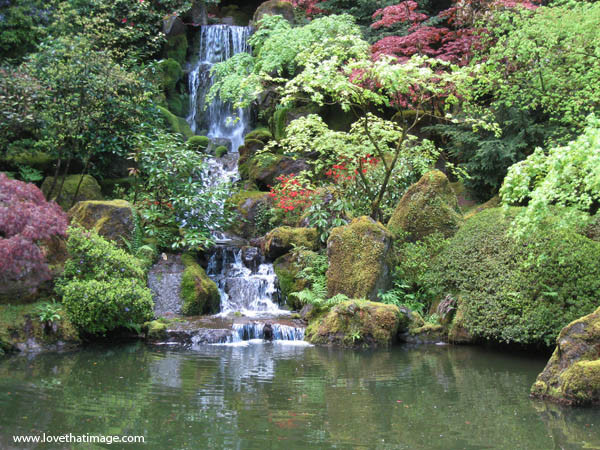 Japanese garden waterfall in springtime Love That Image